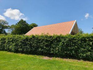 Nederlandse zonnepanelen