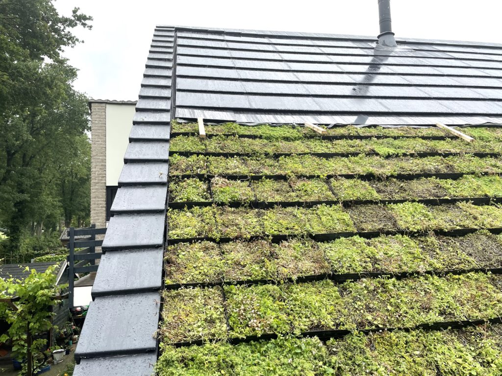 Zonnepanelen geplaatst in Zeijen bij Assen in combinatie met een sedum dak